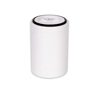 Wkład do filtra prysznicowego SPA zmiękczający z węglem aktywnym